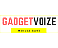Gadget Voize SSD KC2500 Review