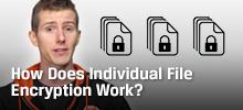 indiv file encrypt community