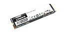 SKC2500M8/500G