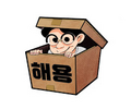 Haeyong Alloy Origins Review