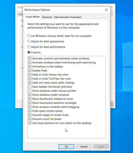 Visual Effects Tab in the Performance Options in Windows 10