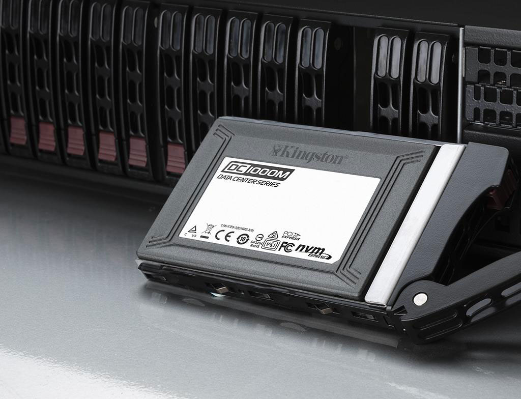 Data Center DC1000M Enterprise U.2 NVMe Solid-State Drive (SSD)