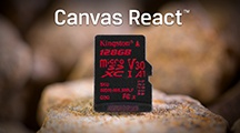 Canvas React™ microSD card is designed to be as fast as you are, capturing 4K video or taking burst-mode photos.